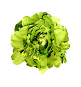 Large Yellow Green Peony Brooch / Hair Pin